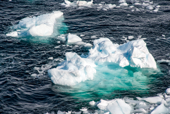 IAIS, SIF call on industry to scrutinise climate risk