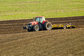 Seed production to get insurance subsidies in China