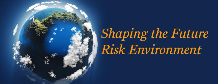 Premium-February-2021-Market-Survey-Global-Risk-report